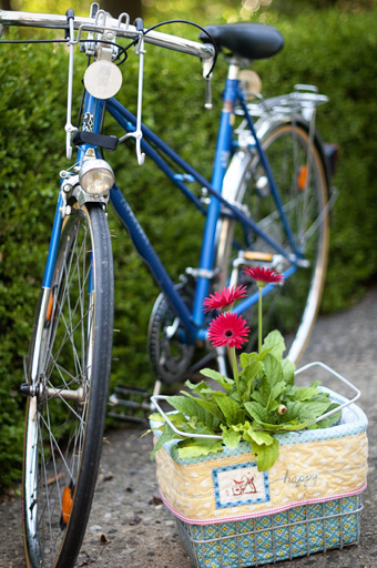 Bike Liner